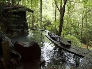 合掌造りの宿 はづ合掌:目の前に広がる槙原渓谷を見晴らす 野趣あふれる薬湯(びわの葉)露天風呂