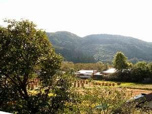 東五郎の湯 高東旅館:こんもりした山林と広がる田園風景は当館おすすめの眺めです。自炊客室から里山の原風景はいかがでしょう