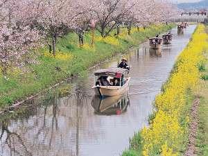クレフィール湖東:四季折々の滋賀を存分に楽しめる水郷めぐり。春はのどかです。車で30分の距離にあります。