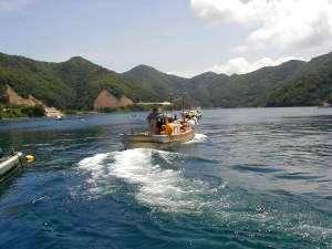 若狭常神 民宿 杉本:海水浴送迎風景。宿の船で送迎いたします。