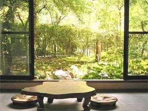 小杉庵:お部屋から庭園が眺められる本館和室。