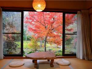 小杉庵:美しい紅葉と庭園を眺めるお部屋