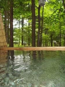 朝夕お部屋出しの宿 ポコアポコ:露天風呂「森林」24H貸切OK 人工温泉の日光水でお肌ツルツル