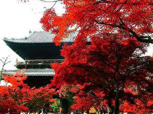 紅葉の南禅寺の山門