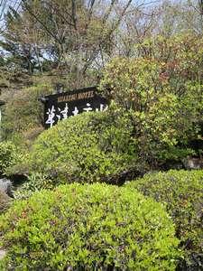 春 エントランス庭園