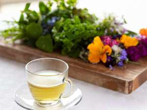 【ほっとひと息】お庭のハーブを摘んで、おいしいお茶を一杯