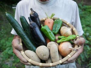 旅館さかえ:【自家製夏野菜】無農薬野菜を自慢の但馬牛と一緒に召し上がれ♪