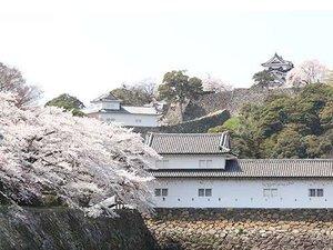 ≪春≫満開の桜を彩る国宝彦根城。