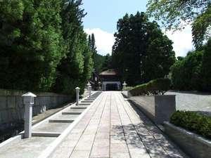 西門院:竜宮門に至る門前の参詣道。高野槙に濃い緑が美しい。