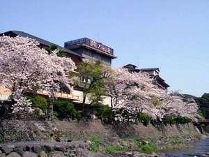大谷山荘:春の外観 桜と音信川。 是非,遊歩道の散策をお勧めします