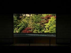 大谷山荘:【吹抜け】例年、11月下旬頃より紅葉の季節を迎えます