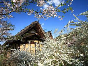かやぶきの郷薬師温泉 旅籠:四季折々の草花に囲まれた春の蔵戸。