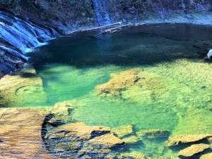 養老温泉 秘湯の宿 滝見苑:眼前は「粟又の滝」。滝つぼまで徒歩5分。