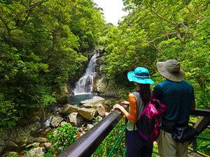 【比地大滝ガイドツアー】沖縄本島最大級の滝へ森を熟知したオクマ認定ガイドがご案内します。3/21まで