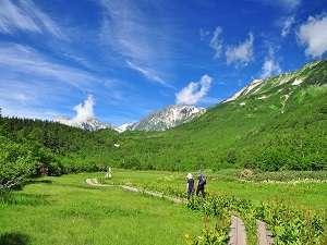 シルクウッドホテル:6月1日から栂池ゴンドラ&ロープウエイ運行です!自然豊かな別世界!