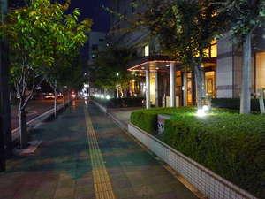 スカイホテル:街路樹