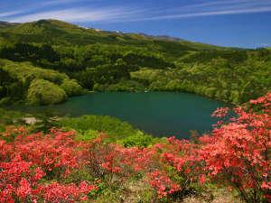 土湯温泉 源泉湯庵 ニュー扇屋:扇屋より、車で約10分。5月半ば~ツツジ山から見る女沼は最高!