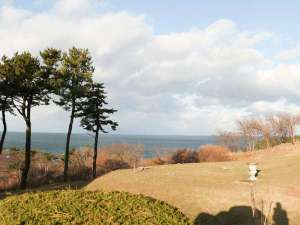 *周辺景色/美しい水平線を見下ろす中庭。時間と共に変わる海の色を眺めてのんびり。