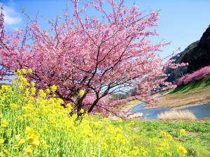 味の彩り主役は金目鯛 お宿 花の木