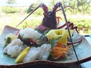 あまくさ温泉ホテル 四季咲館:伊勢海老姿造り・地魚盛合せ一例 9月~11月