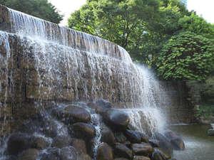 隣接する新宿中央公園では、新宿ナイアガラの滝に癒されます。
