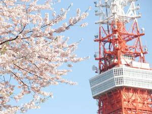 春の訪れを感じる桜と東京タワー