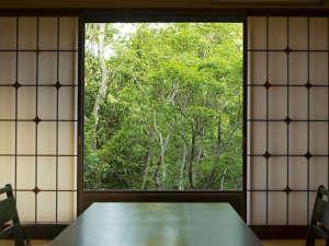 緑溢れる眺めを楽しめる離れ客室