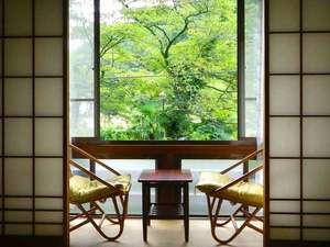 七沢温泉 中屋旅館:*窓からは森林セラピー基地にも認定された七沢の自然をお楽しみいただけます。