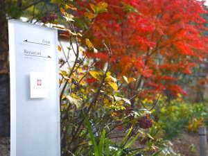 北郷 音色香の季 合歓のはな:合歓のはな 秋のエントランス