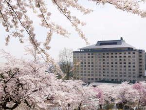 花巻温泉ホテル千秋閣(せんしゅうかく):満開の桜に包まれた花巻温泉。