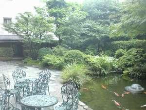 ホテルプリンセスガーデン:中庭