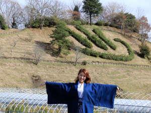 山の湯 かずよ:<風景>山の斜面にダイナミックに描かれた温泉マークが印象的!