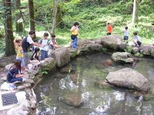 九州中央山地国定公園 市房山キャンプ場:大人も子供も楽しめる<マス釣り体験>も人気です♪