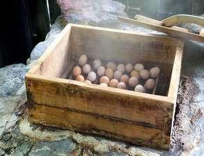 旅館 奥の湯:【温泉蒸し卵】黒川では奥の湯にしかない蒸し処で作る味は格別!一個50円。お夜食やお風呂あがりに♪