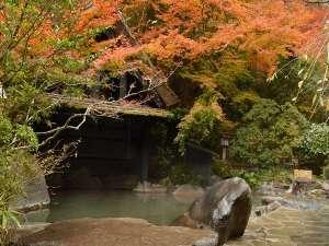 旅館 奥の湯:【紅葉】11月上旬~中旬頃が見頃。一味違う風景。混浴※24時間(20:00~22:00女性専用)