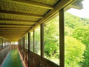 薬草の湯 丸山鉱泉旅館