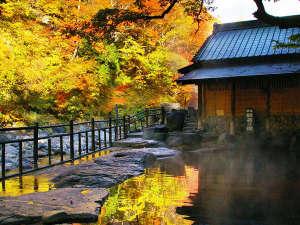 宝川温泉 汪泉閣:『般若の湯』秋・混浴・50畳/露天風呂からの眺めはもちろん、湯船に映る紅葉も美しい秋の景色。