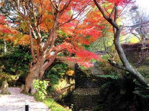 うぐいす谷温泉 竹の葉
