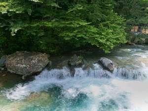 露天風呂から見る四万川の清流