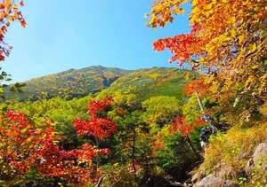 小野川温泉 名湯の宿 吾妻荘:紅葉イメージ