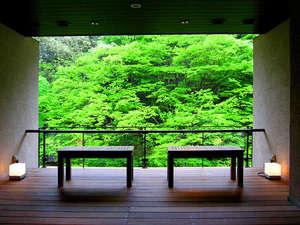 渓谷に佇む源泉湯宿 四万やまぐち館:【月見台ラウンジ】3階と最上階(7階)のラウンジ。開放感ある窓から、四季を楽しんでいただけます。