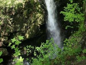 【摩耶の滝】お不動さまのお導きにより、摩耶姫という美しい娘と立派な若者が出会ったという伝説のある滝。