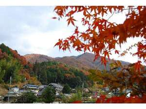 【黒川の里山】秋には紅葉がきれい