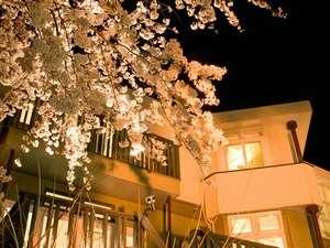 夜桜を眺めながらのディナーはいかがですか?