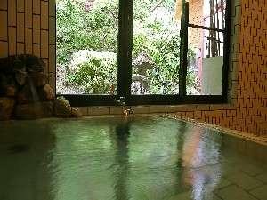 帝釈峡観光ホテル別館 養浩荘:窓からは小庭が望める