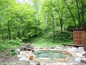野の花山荘:静かな森の中、自然に癒されながら温泉に浸かるシアワセ。貸切露天風呂(無料)