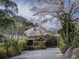 あせび野入口(春)