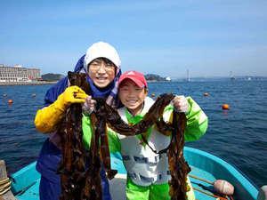 ルネッサンスリゾートナルト:今だけココだけ体験♪ホテル初?鳴門ワカメ収穫で漁師体験!