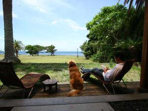 愛犬と楽しむ宿 しぶごえ館山