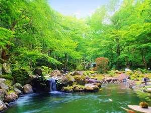 風薫る新緑の息吹に身を委ねる、1万5千坪の壮大な敷地にある日本庭園(新緑イメージ)